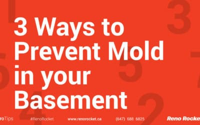 3 Ways to Prevent Mold in your Basement
